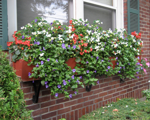Fs1215 Outdoor Container Gardening With Flowering And