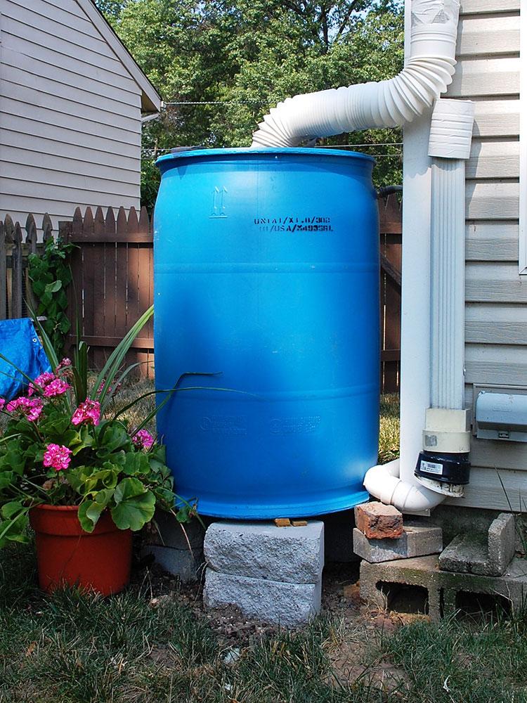 Fs1240 Rain Barrels And Mosquitoes Rutgers Njaes
