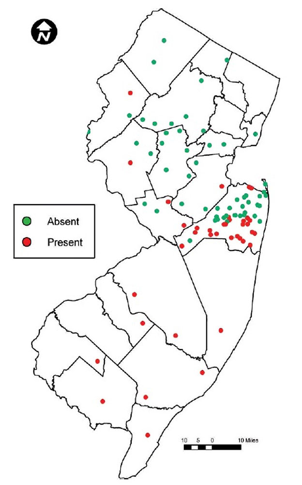 FS1281: Lone Star Ticks in New Jersey: Risk, Ecology, and Prevention on zip codes for south jersey, pump station map south jersey, map of route 80 exit 12 new jersey, lakes and rivers in south jersey,