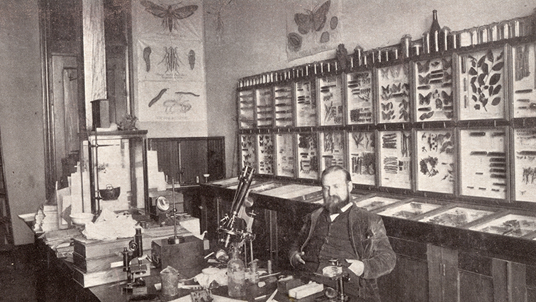 "Photo of Early 20th century Rutgers scientist John B. Smith was ""father of mosquito control."""