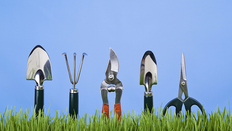 Photo of Don't Rely on Trowel and Error: Learn from the Experts at Rutgers Home Gardeners School